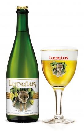 Lupulus Ardens Tripel Bier
